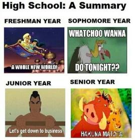 a summary of high school
