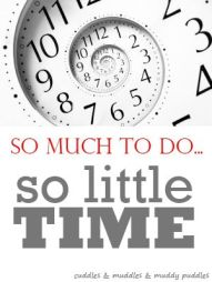 so much to do so little time